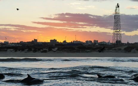 Nelson Mandela Bay. Picture: www.nmbt.co.za