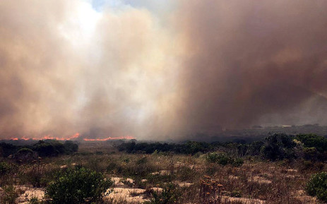 Fire crews are on scene as fires are now raging in Franskraal, Karwyderskraal and Betty's Bay. Picture: @wo_fire /Twitter