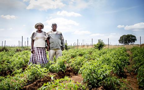 FILE: Farmers on a smallholding. Picture: EWN