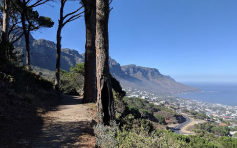 A view of the Pipe Track trail. Picture: Google Earth.