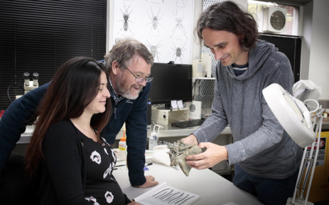 FILE: This undated handout picture received on 14 August 2019 from the Canterbury Museum shows researchers Vanesa De Pietri (L), Paul Scofield (C) and Gerald Mayr (R) with fossilised remains of crossvallia waiparensis, a species of penguin which lived off New Zealand's coast in the Paleocene era some 66-56 million years ago, at the Canterbury Museum. Picture: AFP.