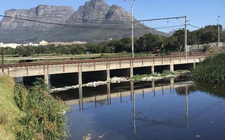 FILE: The polluted Black River near Hazendal in Cape Town. Picture: Monique Mortlock/EWN.