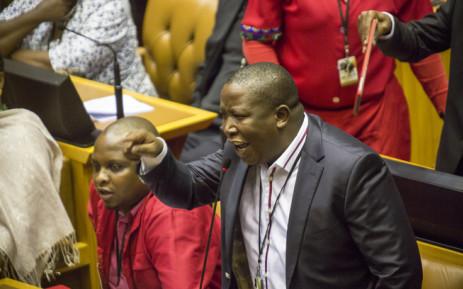 EFF leader Julius Malema in Parliament. Picture: Thomas Holder/EWN.