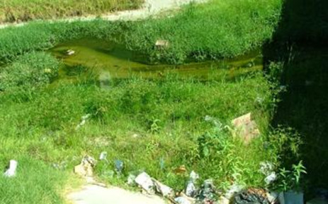 Kuils River residents have complained about the filthy state of the area's main river. Picture: Giovanna Gerbi/Eyewitness News