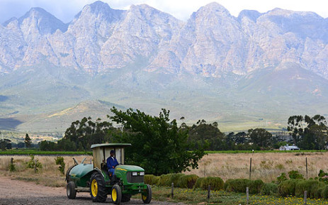 Heavy rainfalls have caused major damages to farmlands and crops in the central Karoo.