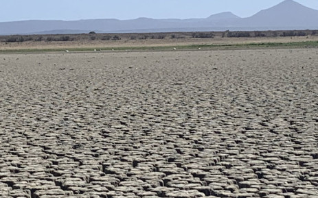 The Nqweba Dam in Graaff-Reinet in the Eastern Cape. Picture: Kaylynn Palm/EWN