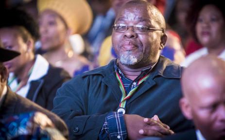 ANC Secretary General Gwede Mantashe. Picture: Thomas Holder/EWN.