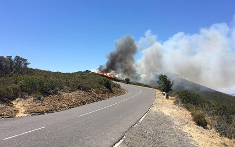 A fire flared up along Signal Hill Road on Lion's Head, on 28 January 2019. Picture: @wo_fire/Twitter