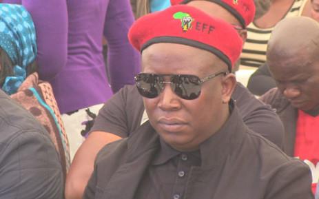 FILE: Economic Freedom Fighters (EFF) founder Julius Malema. Picture: Christa Van der Walt/EWN