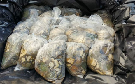 Abalone confiscated in the Strand, near Cape Town on 24 July 2018. Picture: @SAPoliceService/Twitter
