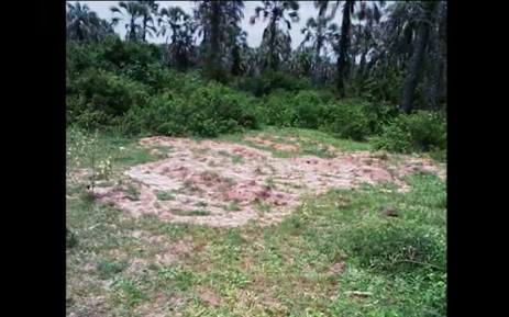 Screengrab of Amnesty International's video footage showing at least five mass burial sites in the country torn by violence.