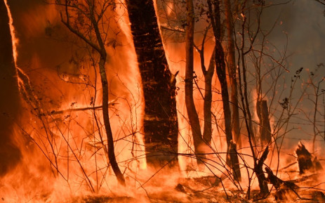 A bushfire burns outside a property near Taree, 350km north of Sydney on 12 November 2019. Picture: AFP