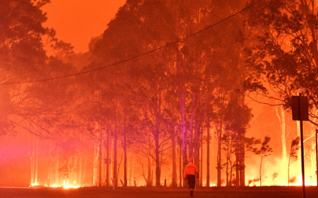 A firefighter walks past burning trees during a battle against bushfires around the town of Nowra in the Australian state of New South Wales on December 31, 2019. Picture: AFP.