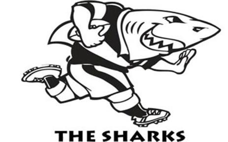 Picture: Sharks website.