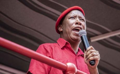 FILE: EFF leader Julius Malema. Picture: Abigail Javier/EWN.