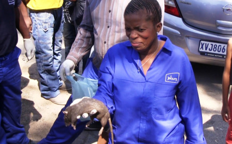 MMC of Health and Social Development Nonceba Malwele addresses the media in Alexandra about Johannesburg's rat problem on 30 September 2014. Picture: Reinart Toerien/EWN.