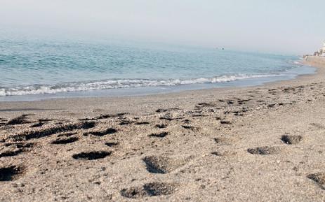 sea-holiday-vacation-sandjpg