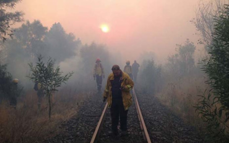 Firefighters battle one of the fires in the Overberg district. Picture: @goFPA/Twitter.
