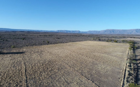 A drought-hit farm in the central Karoo. Picture: Supplied