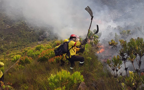 Working on Fire firefighters battle a fire near Franschhoek in the Western Cape on 19 February 2019. Picture: @wo_fire/Twitter