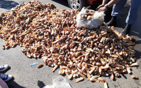 Bail granted to 2 men nabbed with R6.5 mln worth of crayfish, Newsline