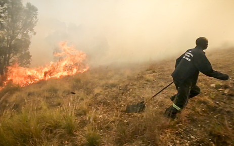 Fire has broken out on the slopes of Signal Hill. Picture: Thomas Holder/EWN