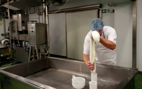 Cheesemaker Radek Bernas squeezes mozzarella into a mould in the dairy at Laverstoke Park Farm near Overton, Hampshire on 6 February 2019. Picture: AFP