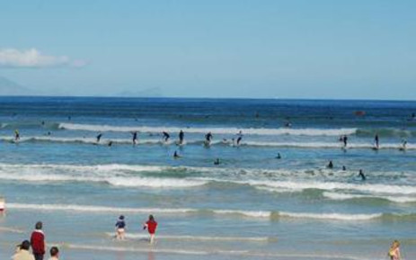 Surfers and beachgoers Picture: Alison Kock/Save Our Seas Shark Centre