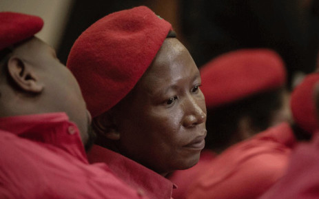 Economic Freedom Fighters leader Julius Malema during a media briefing at Narec, Johannesburg on 21 November 2019. Picture: Sethembiso Zulu/EWN.
