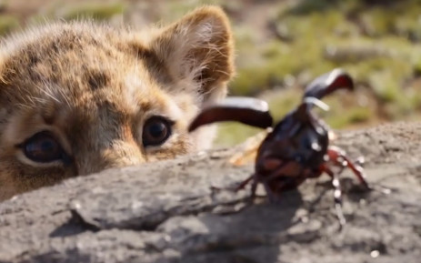 A screengrab from 'The Lion King' trailer.