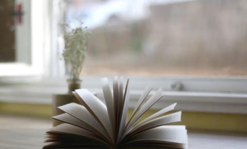 book-novel-reading-literature-123rf