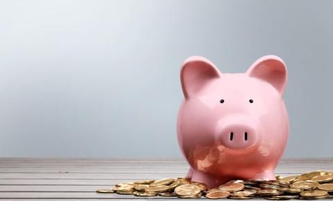 piggy-bank-coins-money-budget-savings-personal-finance-123rf