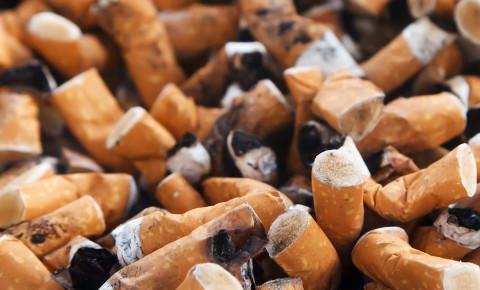 cigarette-buttsjpg