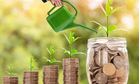 growing-your-investment-moneyjpg