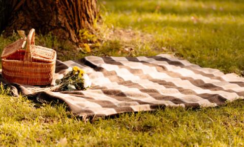 romantic picnic basket lawn park outdoors 123rf