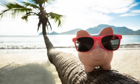 offshore-piggybank-on-palm-tree-trunkjpg
