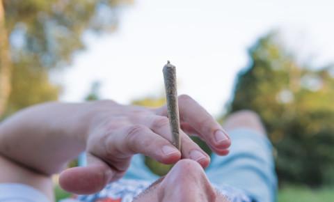 weed-dagga-joint-smoking-marijuana-outdoors-cannabis-blunt-garden-123rf