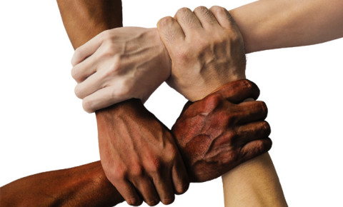 race-unity-hands-harmonypng