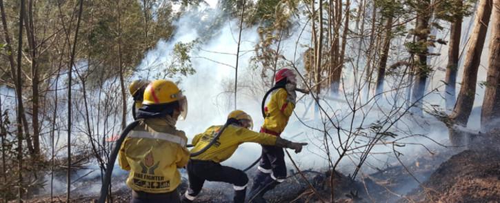 FILE: Working on Fire firefighters battle a blaze in the Western Cape. Picture: @wo_fire/Twitter.