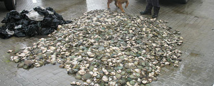 FILE: A man has been arrested after he was caught with more than a dozen bags of abalone in his vehicle near Strand. Picture: Supplied.