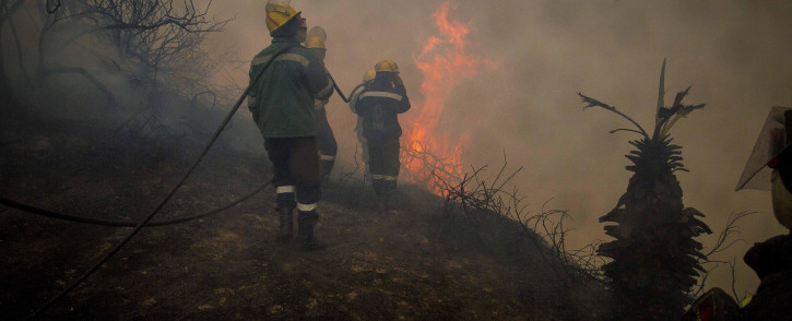 Firefighters keep flames from homes in Buffalo Bay, Knysna. Pictures: Thomas Holder/EWN