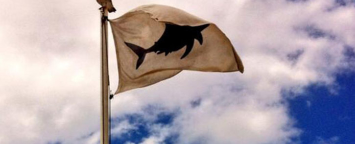 FILE. Cape beachgoers warned of an increase in shark activity as the migration season begins. Picture: EWN