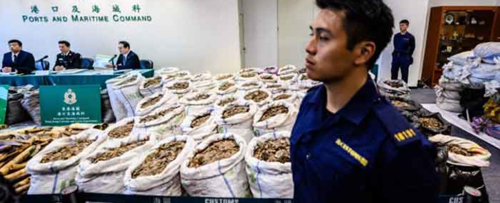A customs officer stands in front of sacks of seized endangered pangolin scales displayed next to ivory elephant tusks (L) during a press conference at the Kwai Chung Customhouse Cargo Examination Compound in Hong Kong on 1 February 2019. Picture: AFP.