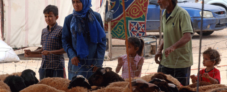 A Libyan family picks a sheep at a market in the eastern Libyan city of Benghazi on July 17, 2021, ahead of the annual Eid al-Adha holiday, celebrated by Muslims around the world. There were few customers at the Sidi Khalifa roadside market on the edge of Benghazi days ahead of Eid, as soaring prices put the traditional sheep slaughter beyond the means of most Libyans. Picture: Abdullah Doma / AFP