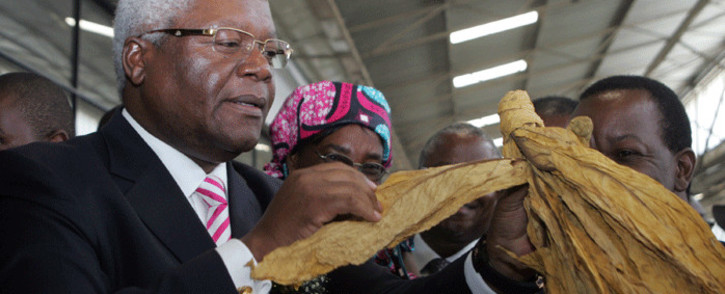 FILE: This picture taken on 19 February 2014 shows Zimbabwe former finance minister Ignatius Chombo inspecting a leaf as he officially opens the annual Zimbabwe tobacco marketing season in Harare at the Tobacco Sales Floors. Picture: AFP.