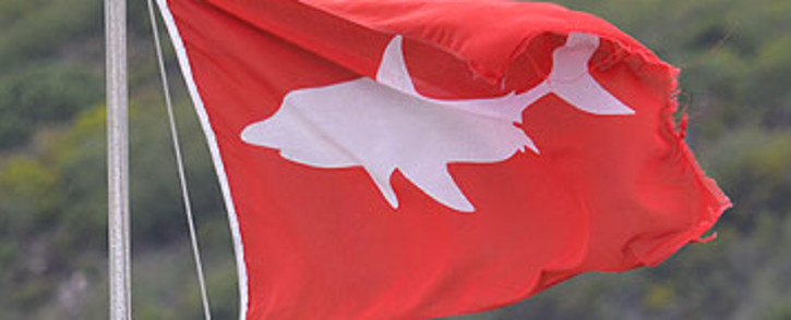 FILE: A red flag, indicating a high alert for sharks, at a beach. Picture: EWN
