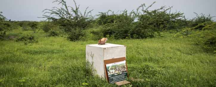 The stone to commemorate the start of construction of 'Akon City' is pictured in Mbodiene on 30 August 2021. One year after rapper, Akon, laid the first stone of his six billion dollar city outside the small seas side village of Mbodiene, the site remains empty. Picture: JOHN WESSELS/AFP