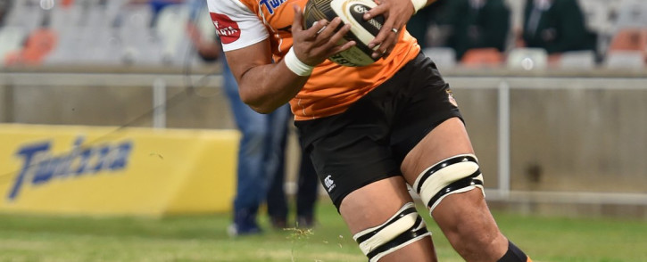 Uzair Cassiem has joined Welsh side Scarlets. Picture: Twitter/@CheetahsRugby