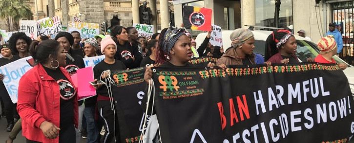 Farmworkers march to Parliament on 28 August 2019 to call for the ban of 67 pesticides. Picture: Kaylynn Palm/EWN