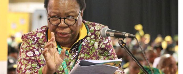 FILE: Higher Education Minister Naledi Pandor. Picture: @MYANC/Twitter.